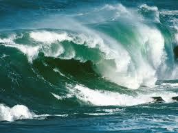 wave 28